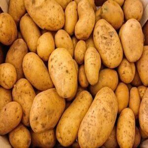 Pommes de terres grenailles Bio